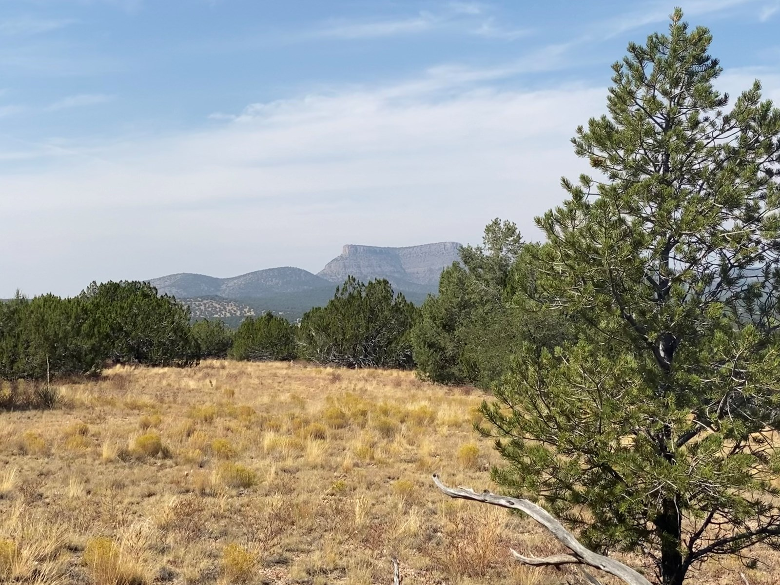 Large Acreage for Sale Borders State Trust Land in Arizona