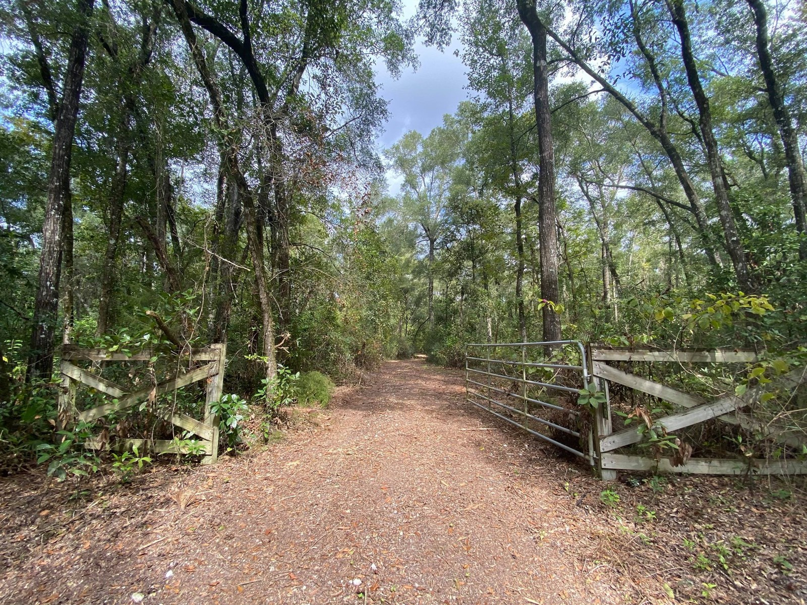 BEAUTIFUL LOT IN BRANFORD FL!