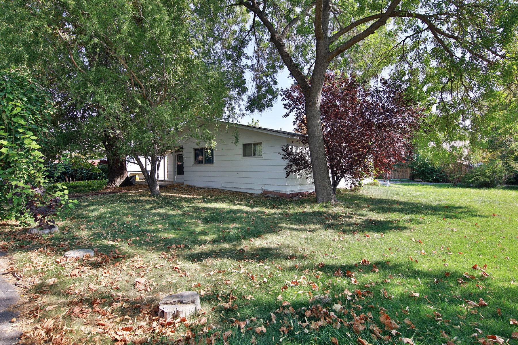 Home for Sale in Grand Junction Colorado