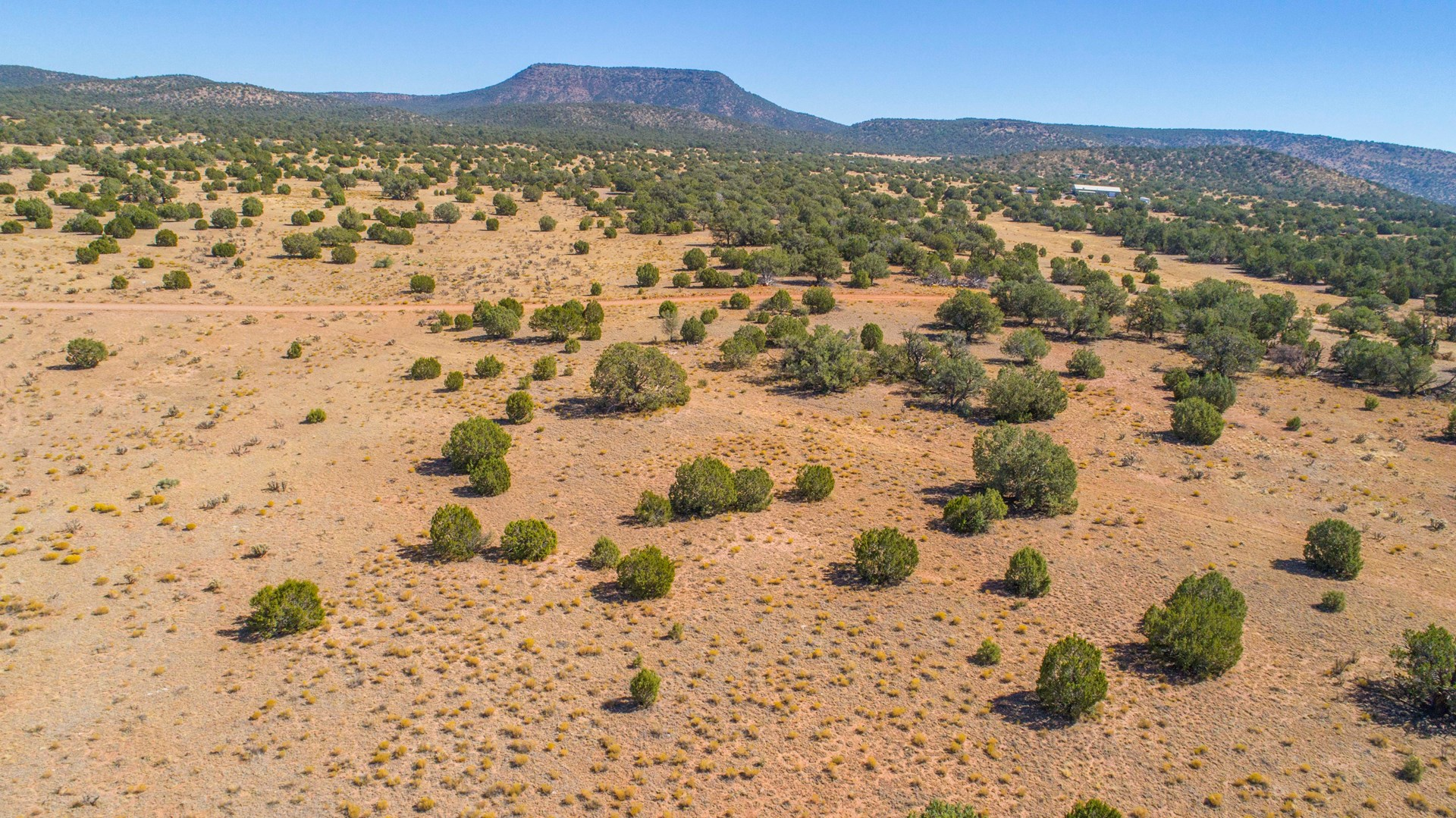 Vacant Land Borders Public Land For Sale in Seligman AZ