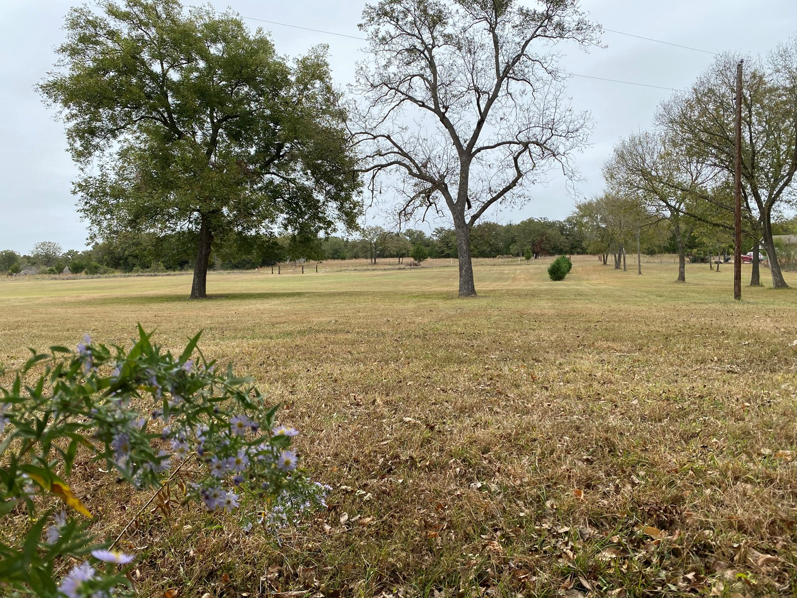 SOUTHERN OKLAHOMA LAND SUITABLE FOR BUILDING- CLOSE TO LAKES