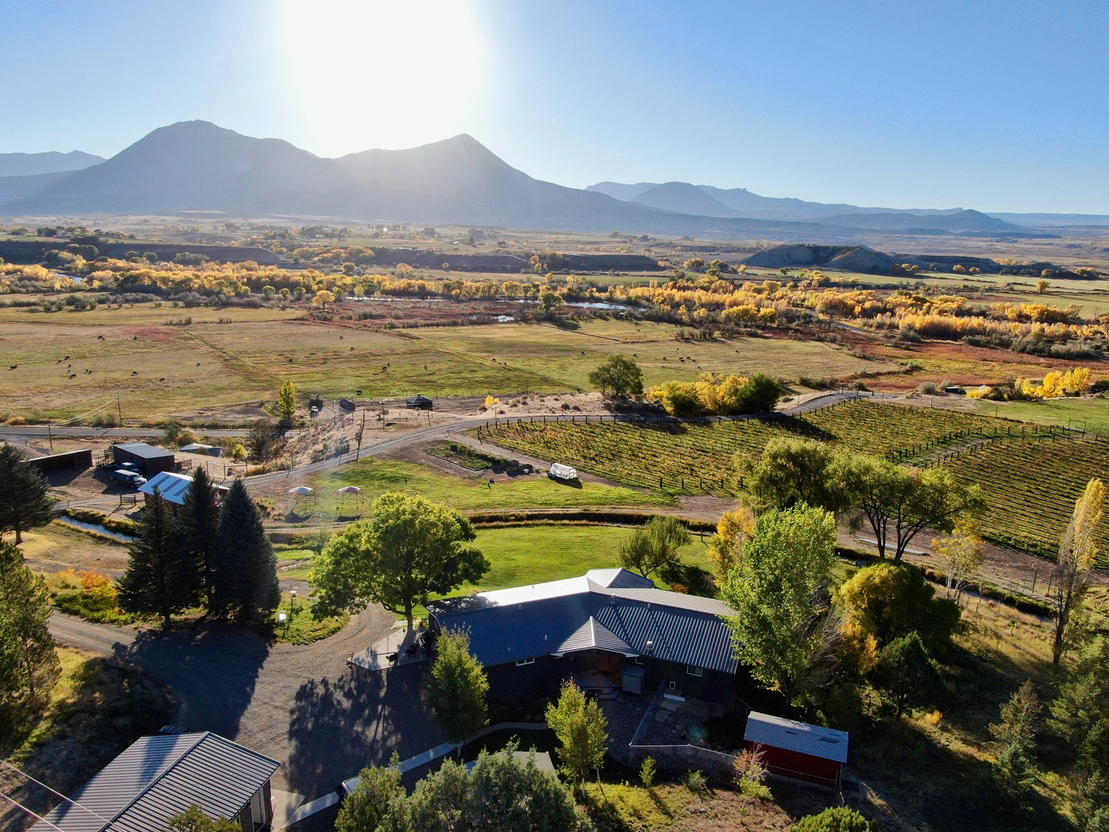 Colorado Winery for Sale