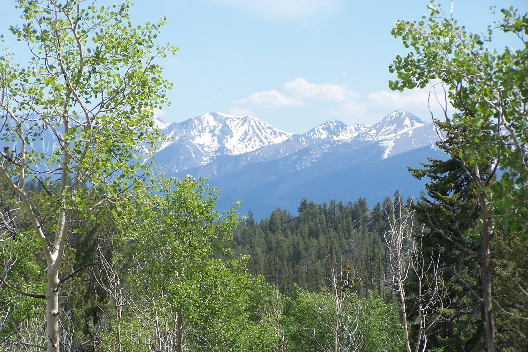 Mountain Property Colorado Chaffee County Private for Sale