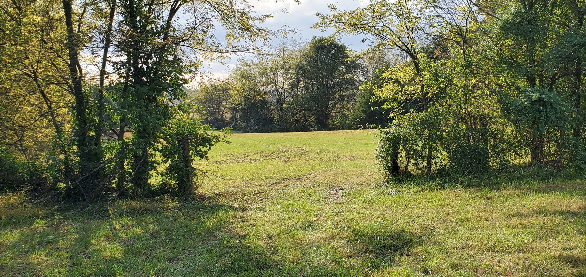 5.32 Acre lot for sale near Franklin Kentucky