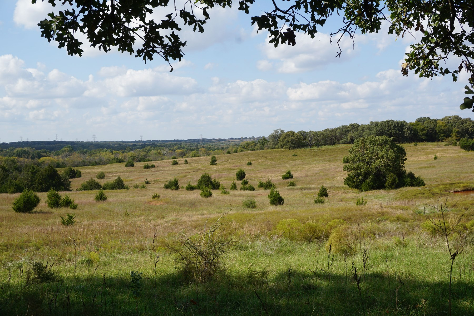 No Reserve Land Auction, Lincoln County, OK Nov 8 1:30 p.m.
