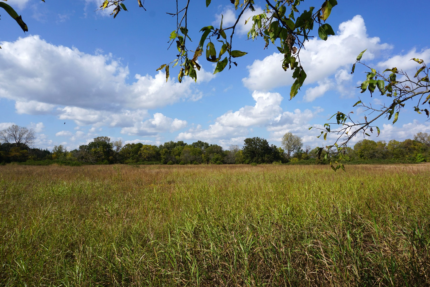 No Reserve Land Auction, Lincoln Co, OK Nov 8 @ 1:30 p.m.