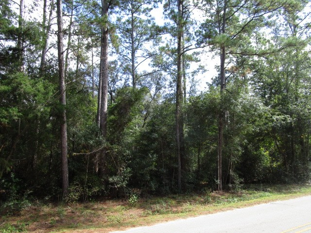 Great homesite with large trees very close to Lake Talquin