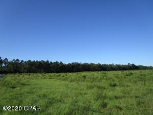 Undeveloped commercial lot on Crawfordville Hwy.