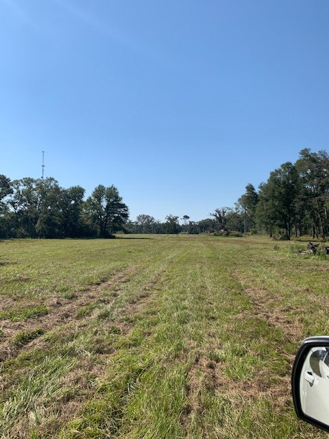 Undeveloped city lot ready for new construction