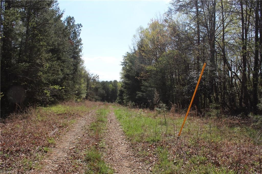 Land For Sale In Mount Airy North Carolina 27030