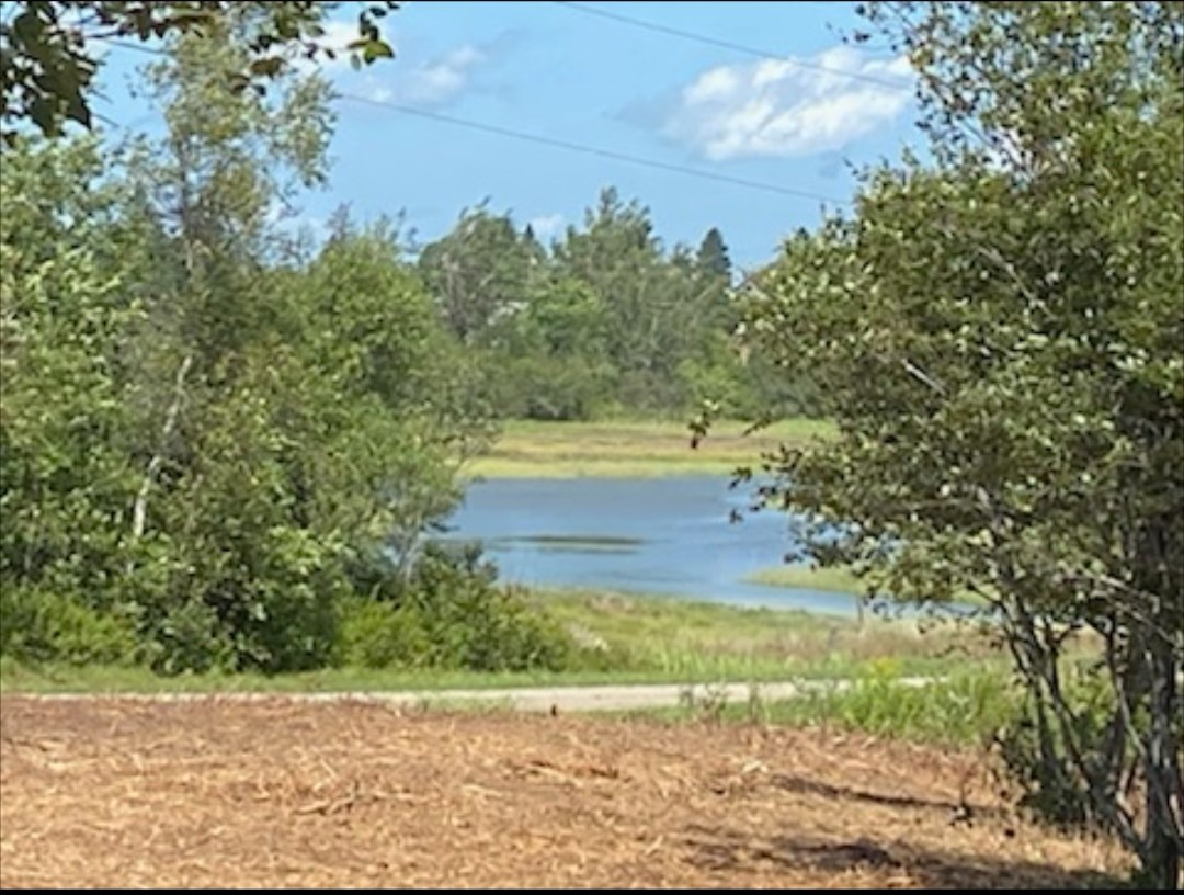Coastal Waterfront Land for Sale