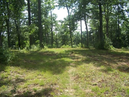 14.32 ACRES OF LAND LOCATED IN PATRICK COUNTY, VIRGINIA