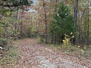AR RECREATIONAL PROPERTY HUNTING LAND 11 ACRES TIMBERLAND