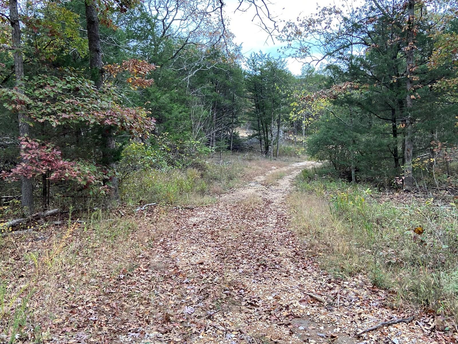Arkansas Recreational property Hunting Land 11 acres woods