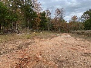 AR HUNTING LAND 10.6 ACRES IN ARKANSAS RECREATIONAL PROPERTY