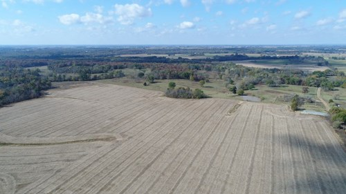 Highly Productive Farm in West-Central MO Tillable & Pasture