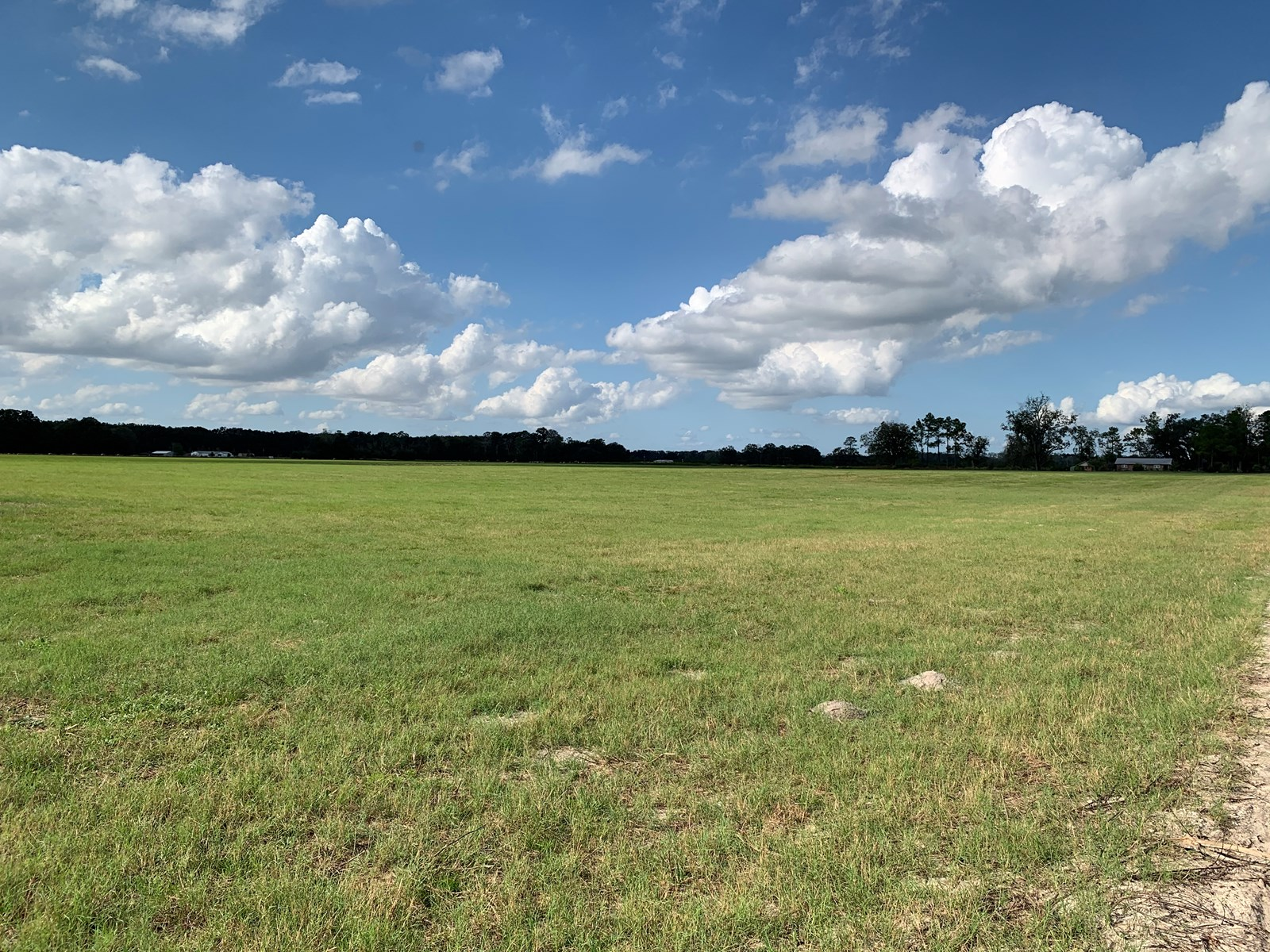 40 acres of  cleared pasture for cows, horses, or row crops