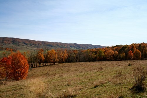 Grazing and hunting land/Blue Grass Valley of Highland Co.