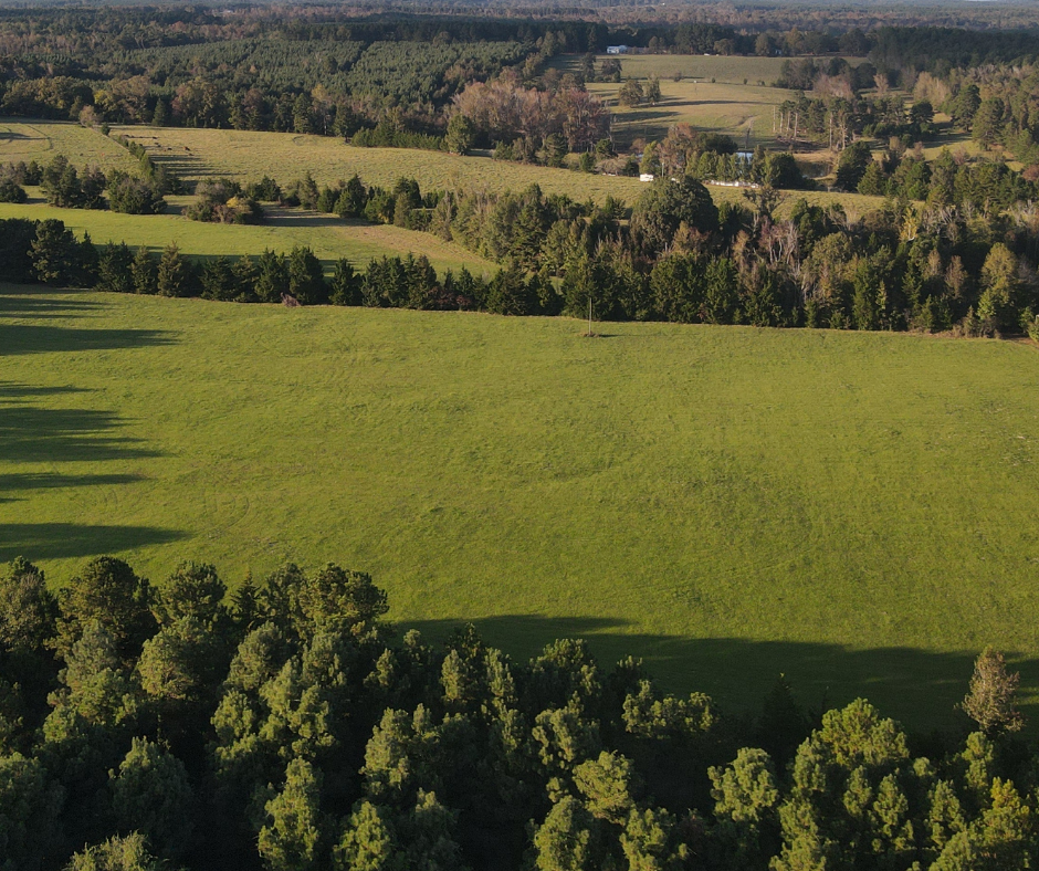 East Texas Homesite location for Sale