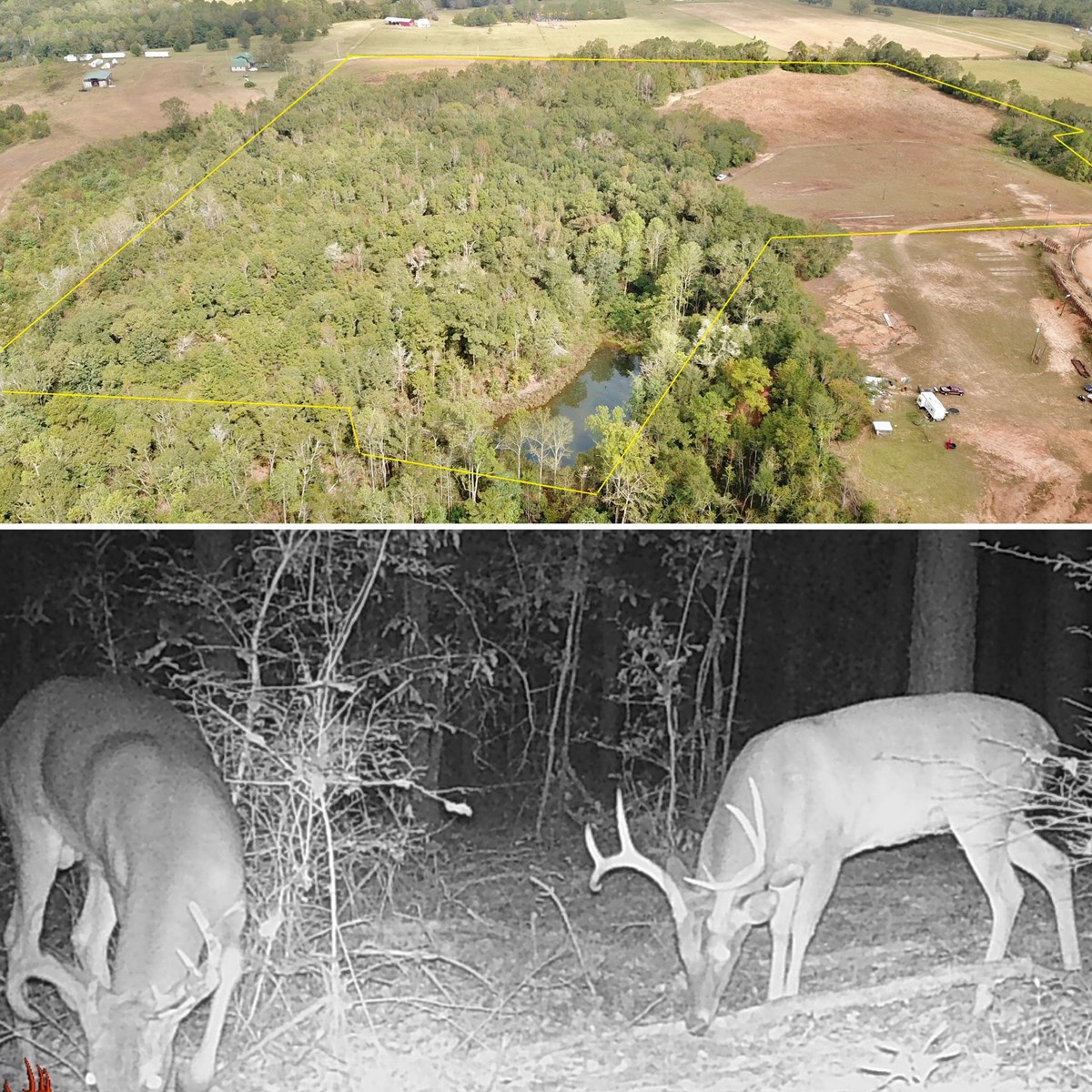 36.5ac Hunting & Recreational Land for Sale Henry County AL