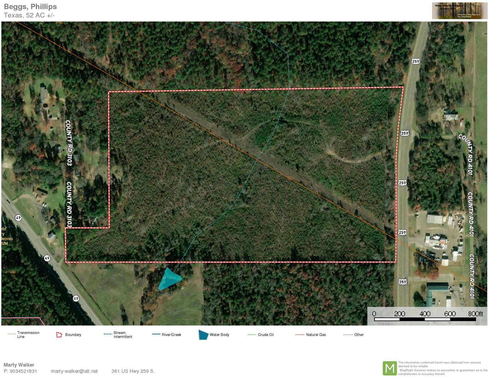 Timberland For Sale in Morris County TX