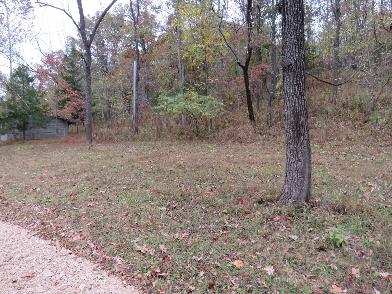 Land for sale with Creek frontage. Ava Mo