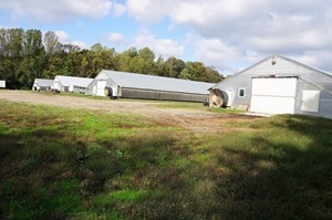 POULTRY FARM IN THE PIEDMONT OF NORTH CAROLINA