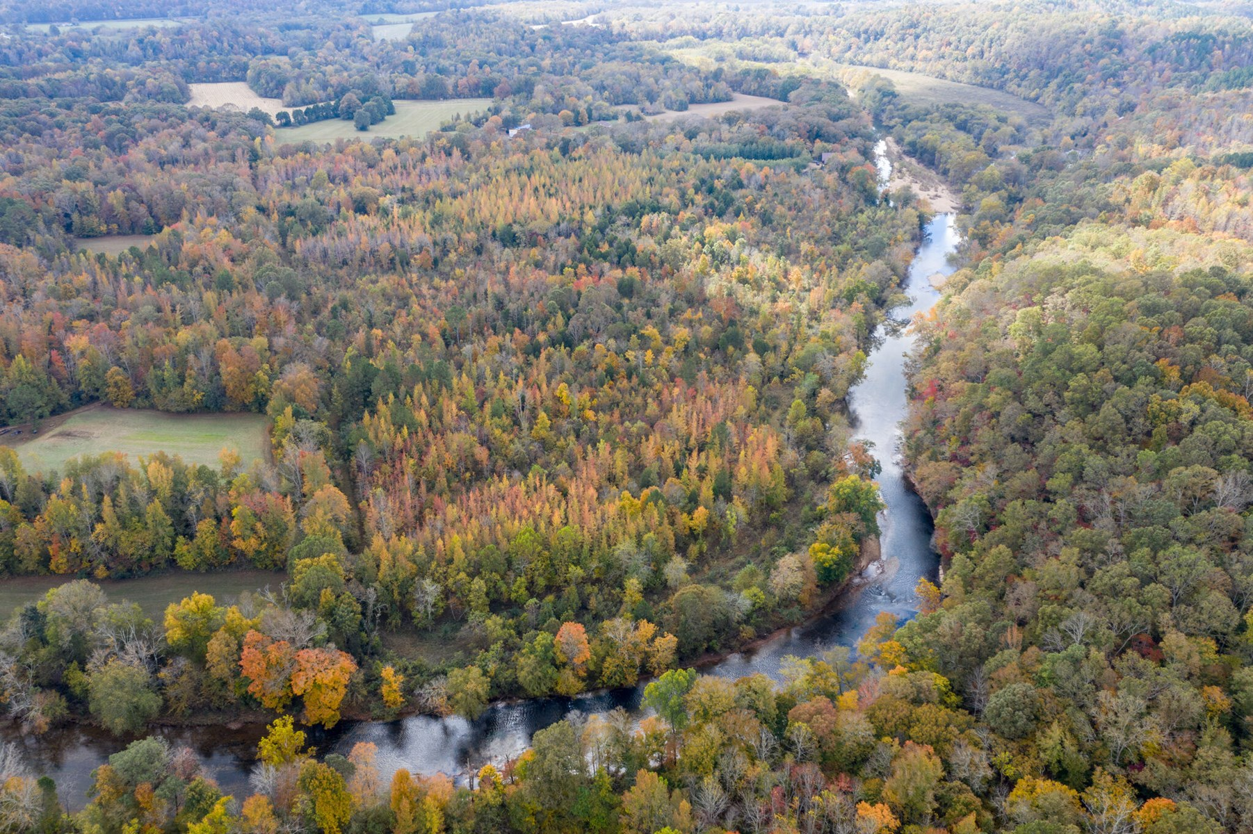 Hunting & Recreational Land for Sale in Hohenwald, Tennessee