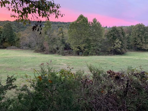 Madison County AR 80 Acres Hunting Land For Sale