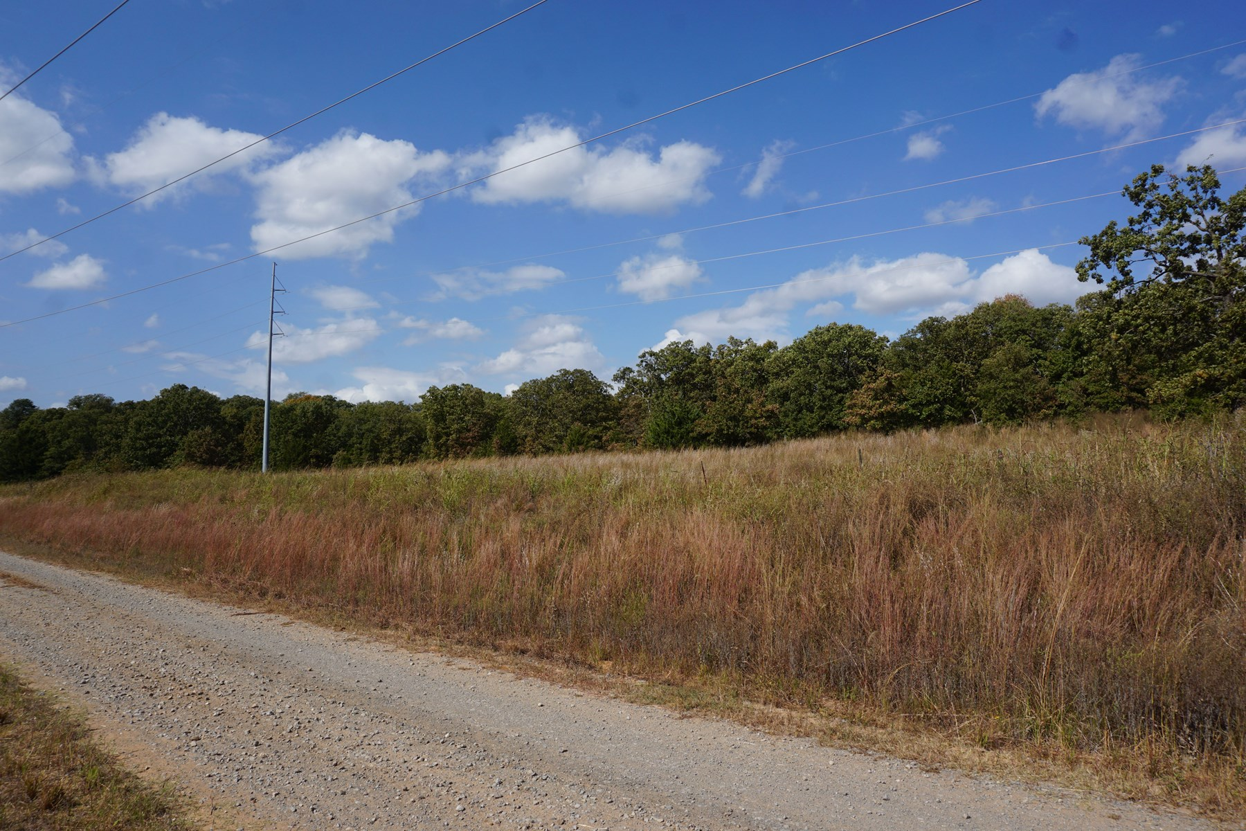 No Reserve Land Auction, 72 Acres +/-, Nov 22 @ 1:30