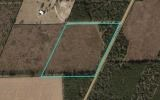 20 acres in planted pines just 5 years old.