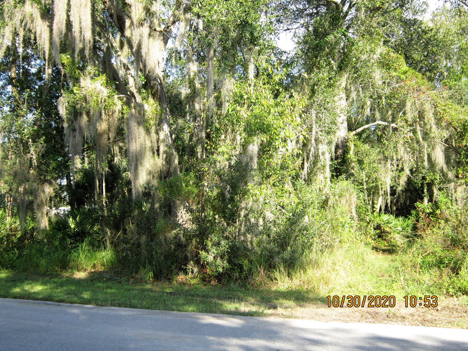 Build your Home/Modular on these 5 lots Central  Florida