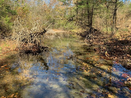 Hunting Property For Sale in Arkansas