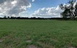 20 acres of cleared pasture ready for your farm or home!