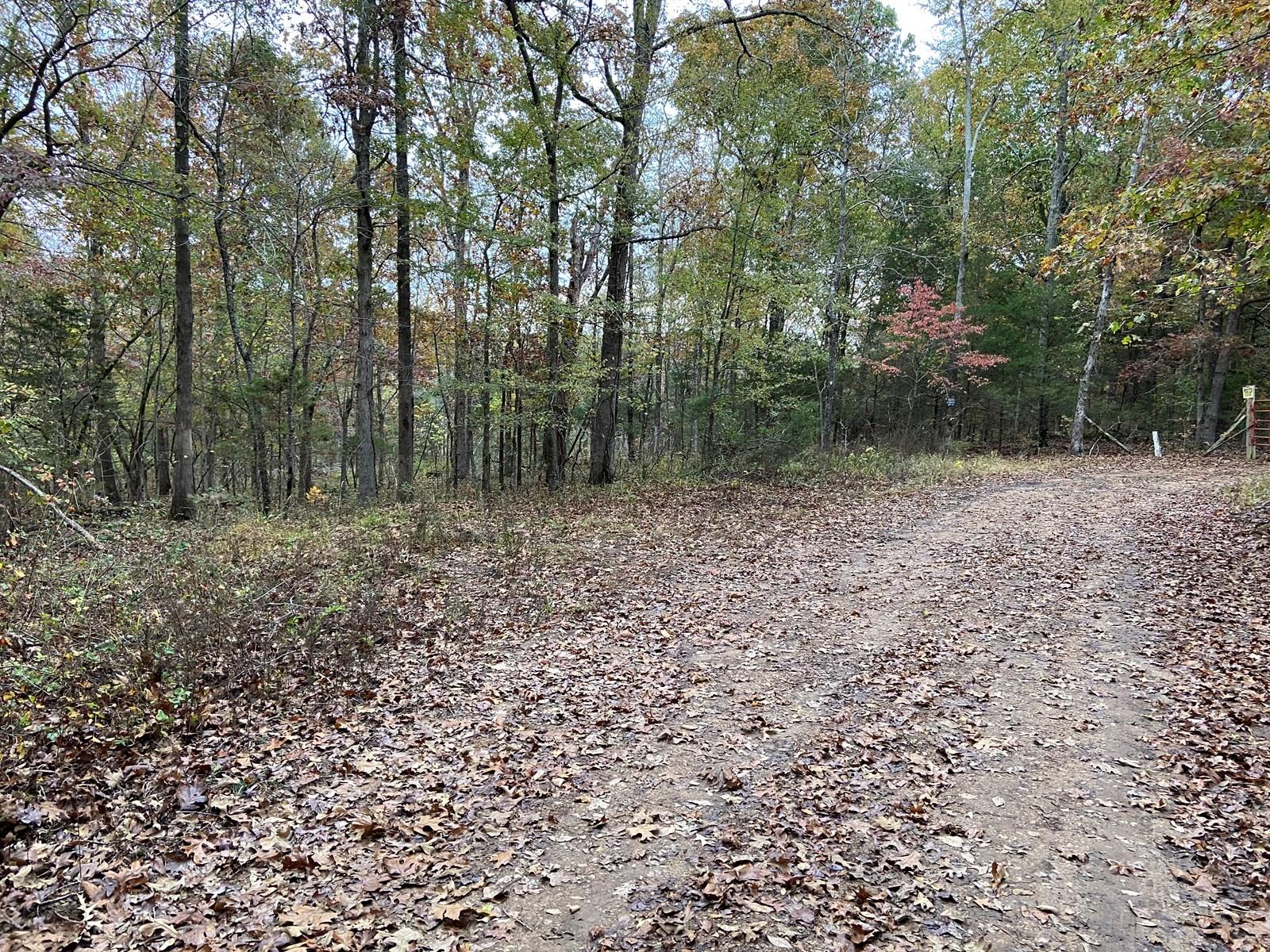 Arkansas Hunting Land 10 acres woods recreational property