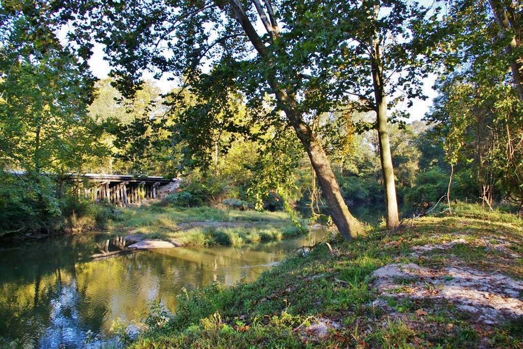 36.36 Acres Riverfront Hunting Property for Sale in SW MS