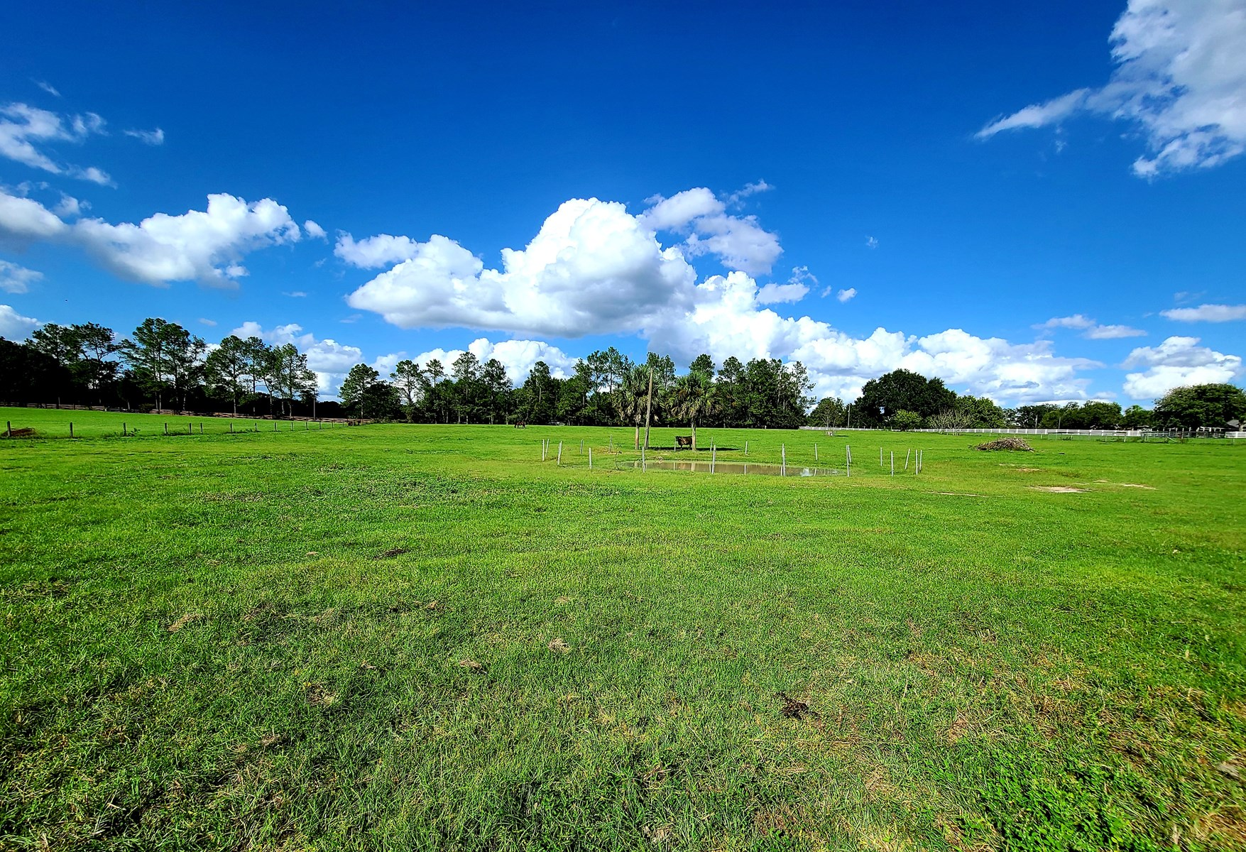 FLORIDA LAND FOR SALE
