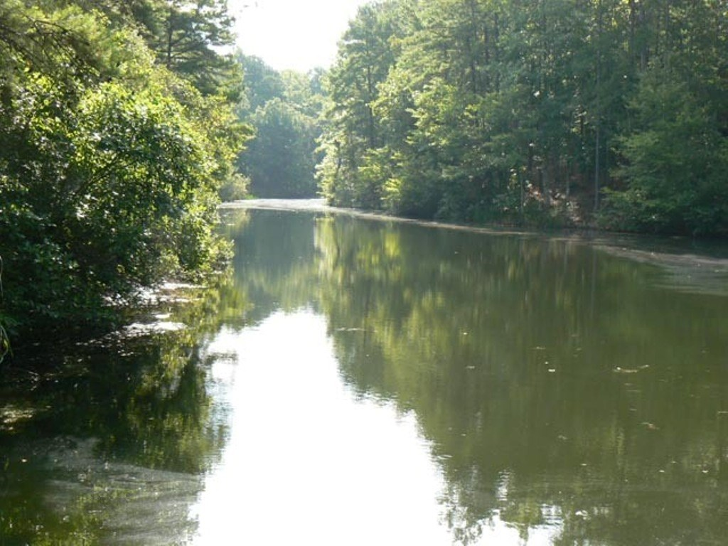 84 +ACRES WINNSBORO, TX WOOD COUNTY, SPRING-FED LAKE/POND