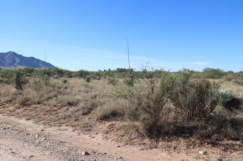 80 acres in historic Dragoon, AZ on Flying Horseshoe Ranch