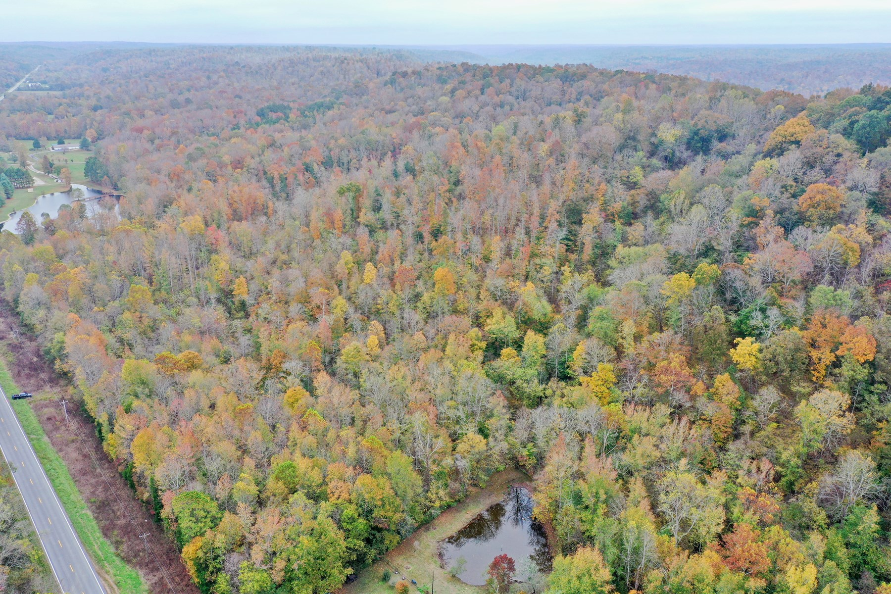 Land for Sale in Hickman County TN with Creek and Spring