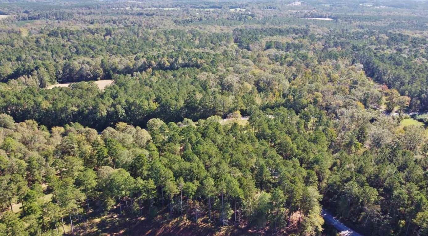 5.46 Acre Land for Sale-Country Estate, Ruston, LA