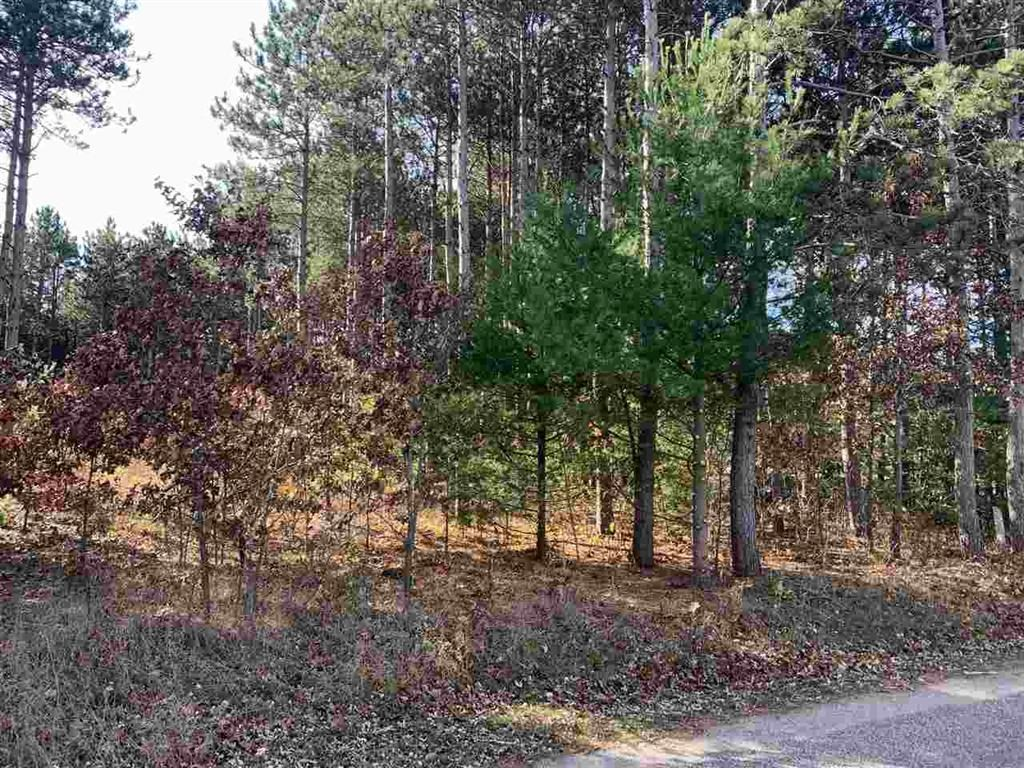 Buildable Lot for Sale in Waupaca