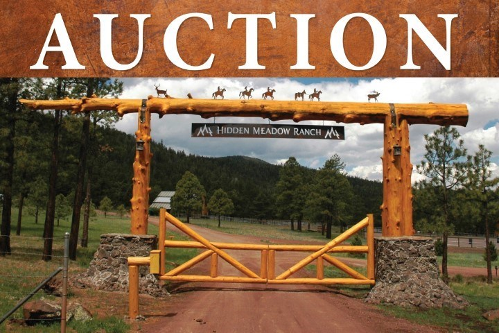 ONLINE AUCTION - LOT 44, HIDDEN MEADOW RANCH, GREER AZ