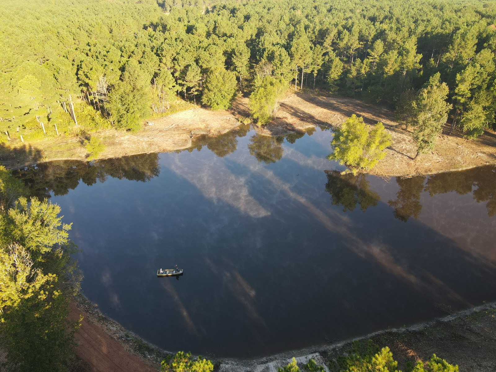 TEXAS TIMBERLAND PROPERTY & HUNTING LAND FOR SALE