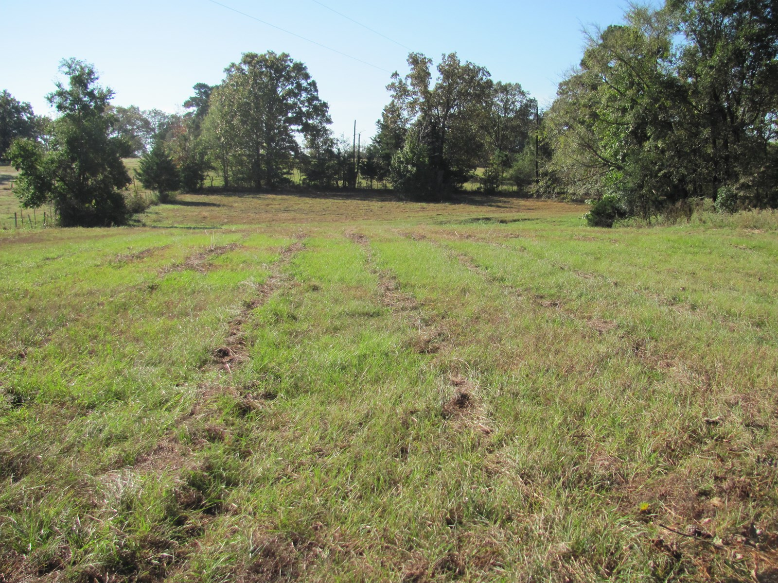 27.7 acres hunting land in Cass County Texas