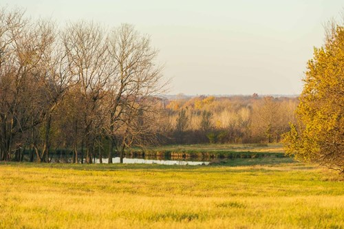 Awesome Build Site on Acreage Close to Town, Peculiar MO