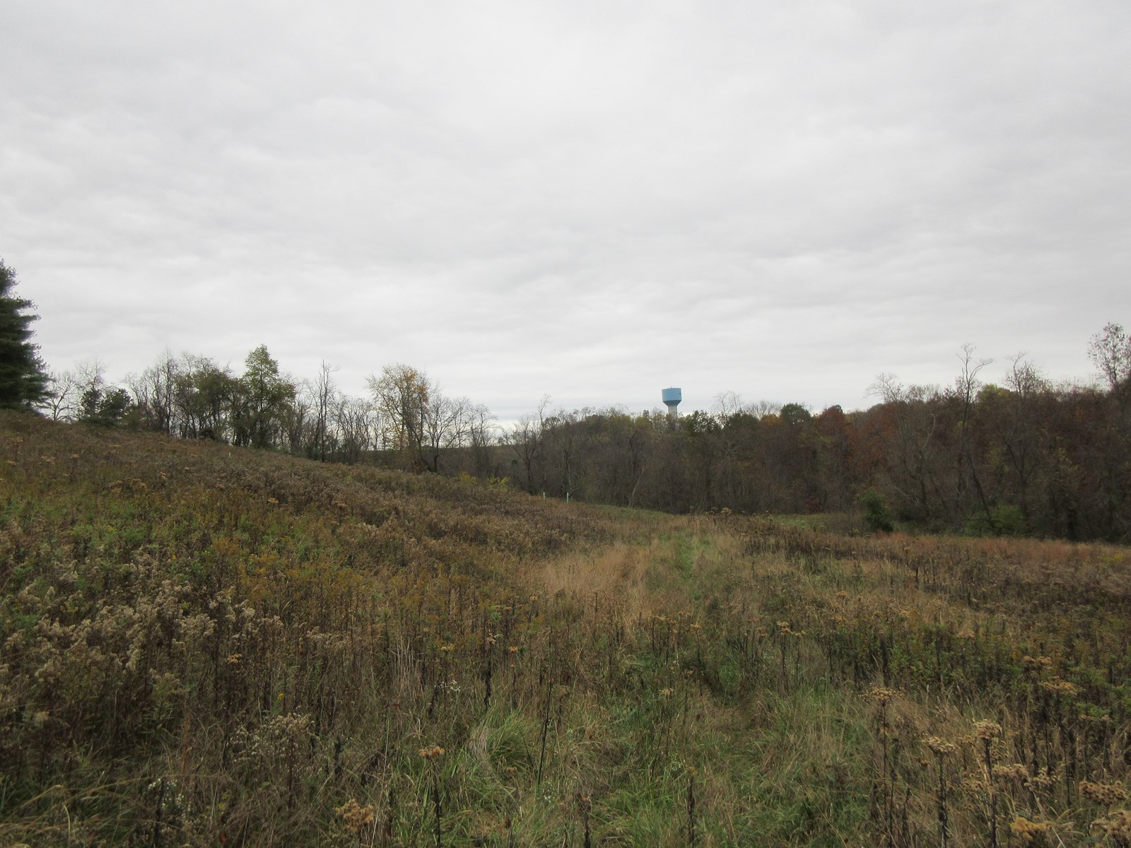 Marietta Rolling Acreage for Sale