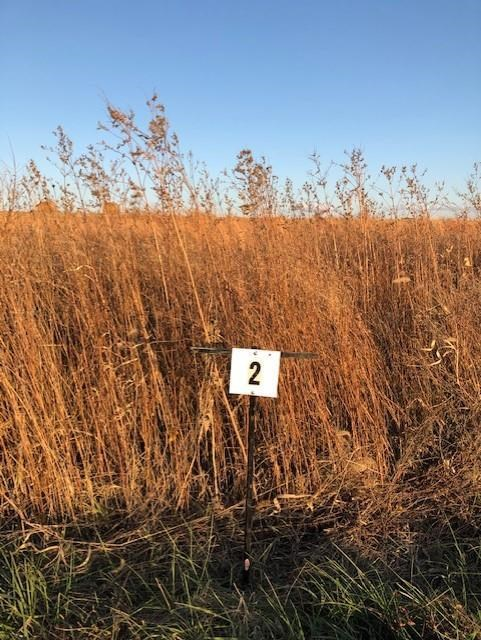 20+/- Ac Great Building Site w/ Hunting & farm Opportunities