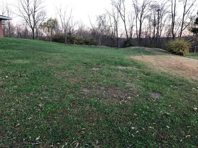 Woodsfield, OH Town Lot For Sale