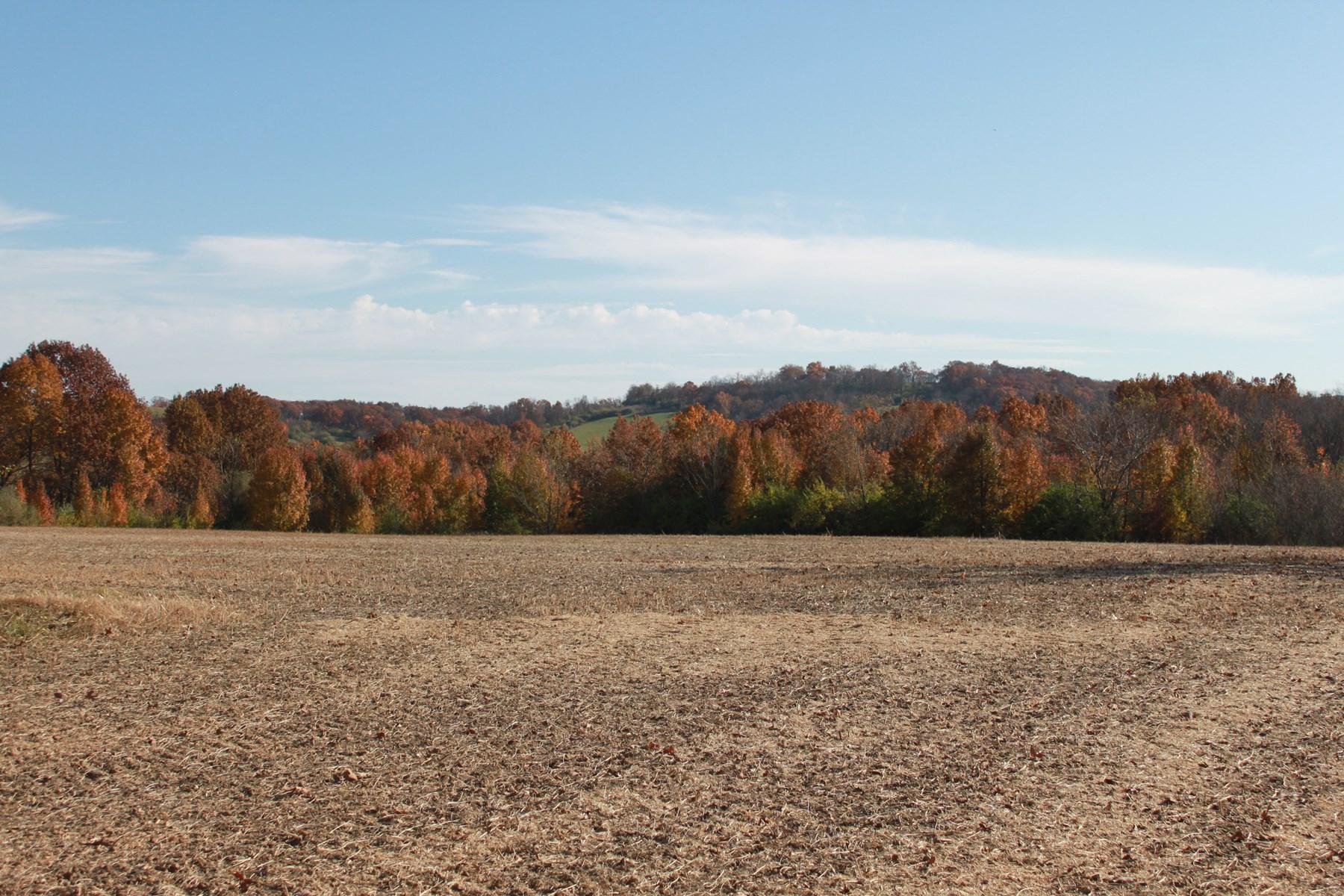 Recreational Farm For Sale | Lincoln, MO